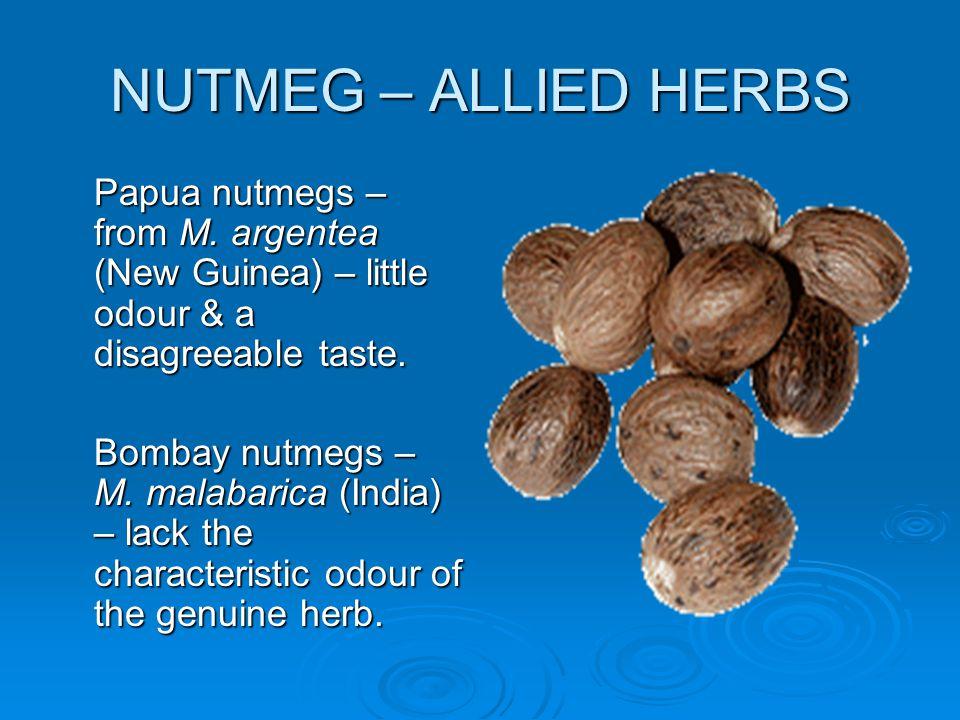 NUTMEG – ALLIED HERBS Papua nutmegs – from M. argentea (New Guinea) – little odour & a disagreeable taste. Bombay nutmegs – M. malabarica (India) – la