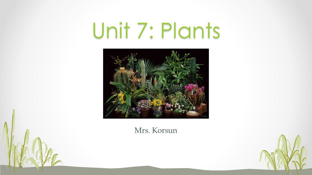 Mrs. Korsun Unit 7: Plants