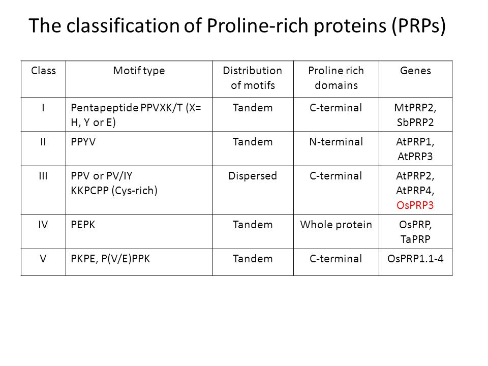ClassMotif typeDistribution of motifs Proline rich domains Genes IPentapeptide PPVXK/T (X= H, Y or E) TandemC-terminalMtPRP2, SbPRP2 IIPPYVTandemN-ter