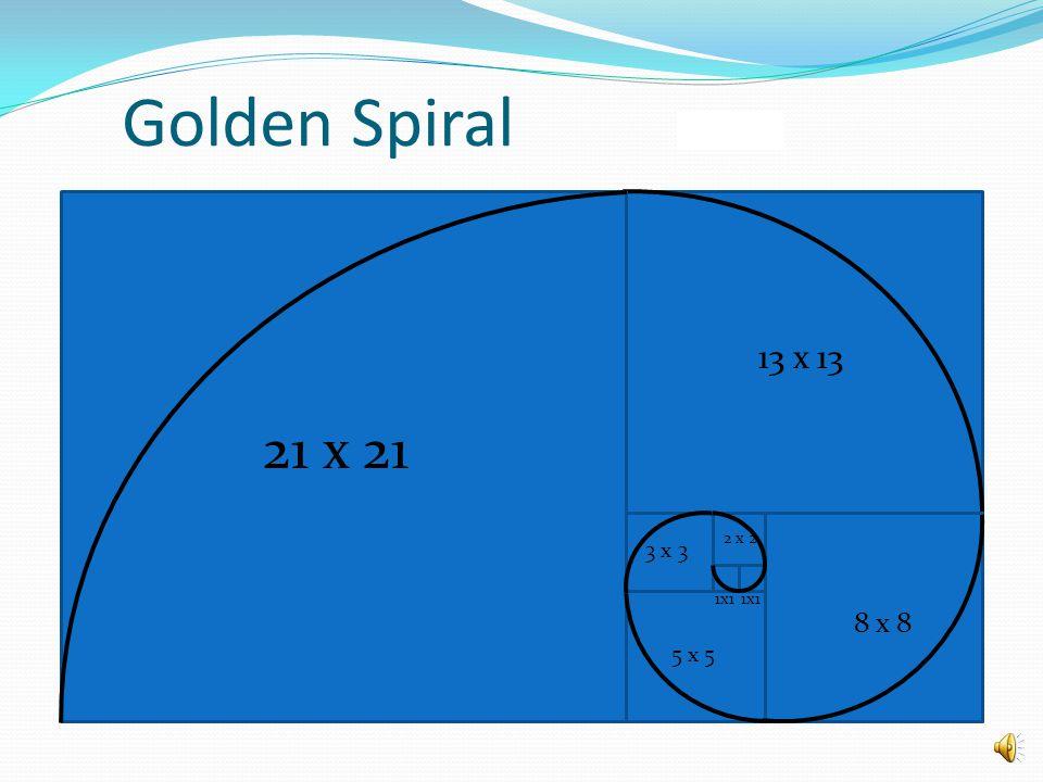 Golden Spiral 1x1 2 x 2 3 x 3 5 x 5 8 x 8 13 x 13 21 x 21