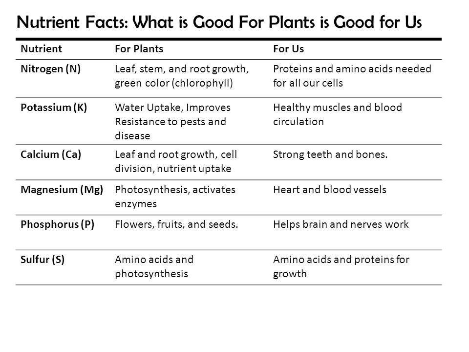 NutrientFor PlantsFor Us Nitrogen (N)Leaf, stem, and root growth, green color (chlorophyll) Proteins and amino acids needed for all our cells Potassiu