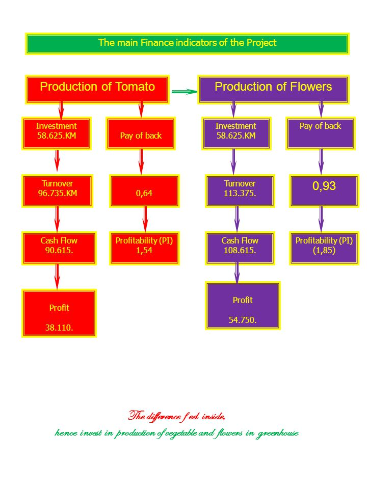 The main Finance indicators of the Project Cash Flow 90.615.