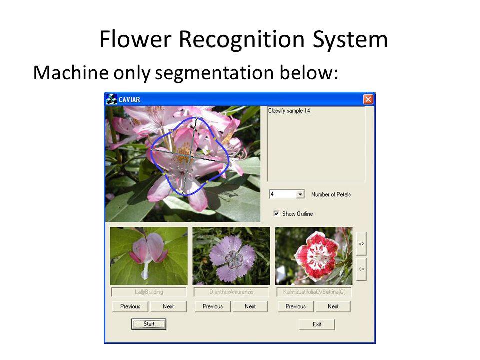 Flower Recognition System Machine only segmentation below: