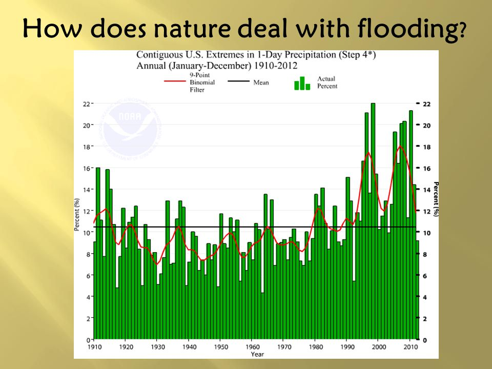 How does nature deal with flooding ?
