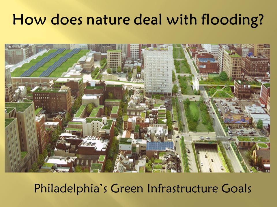 How does nature deal with flooding? Philadelphias Green Infrastructure Goals