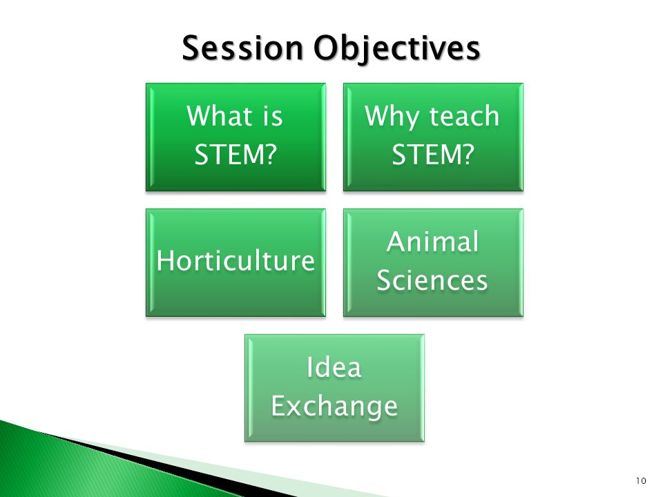 10 What is STEM Why teach STEM Horticulture Animal Sciences Idea Exchange Session Objectives