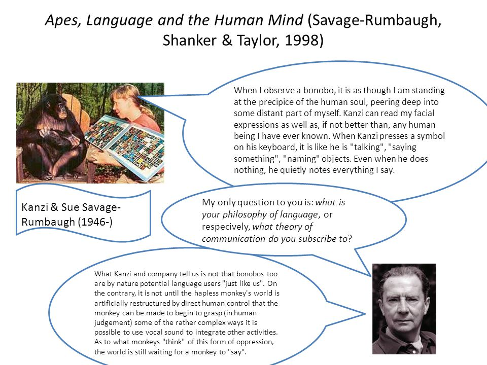 Apes, Language and the Human Mind (Savage-Rumbaugh, Shanker & Taylor, 1998) What Kanzi and company tell us is not that bonobos too are by nature potential language users just like us .