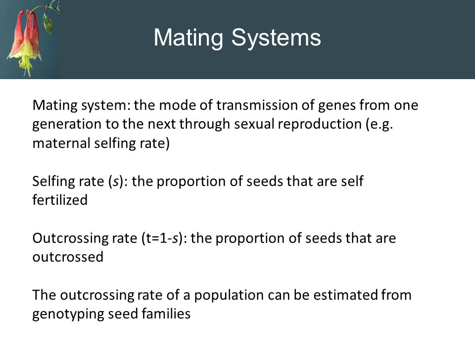 Mating Systems Mating system: the mode of transmission of genes from one generation to the next through sexual reproduction (e.g. maternal selfing rat