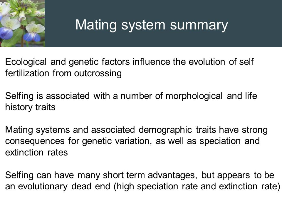 Mating system summary Ecological and genetic factors influence the evolution of self fertilization from outcrossing Selfing is associated with a numbe