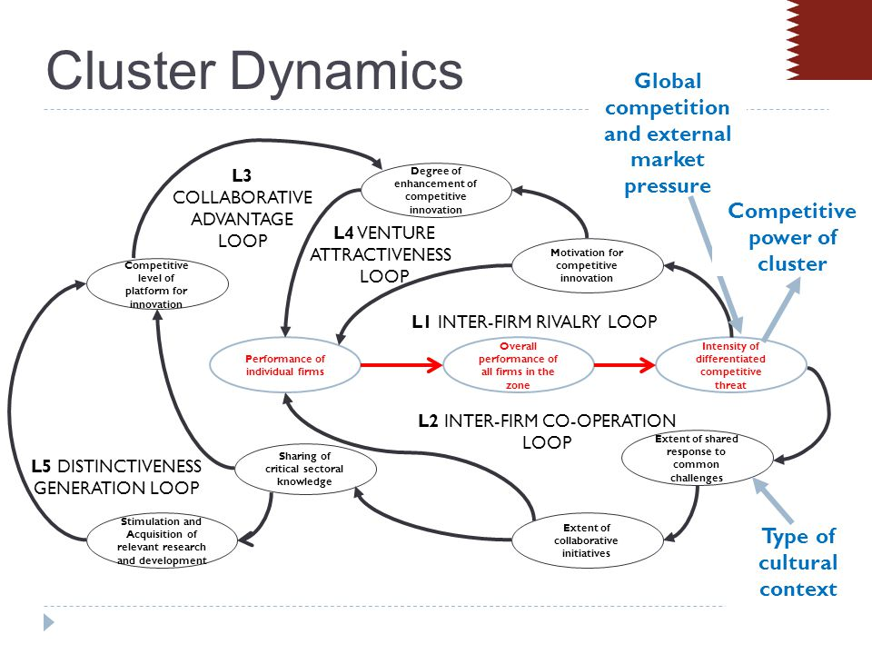 Clusters Dynamics and Economic Transitions Summary of Qatar Situation Significant portion of GDP dependent on gas and oil hard currency earnings Significant investments in infrastructure and education Strategy includes attempt to limit high exposure to volatile energy prices – diversify to non-energy sectors Committed to environmental stewardship.