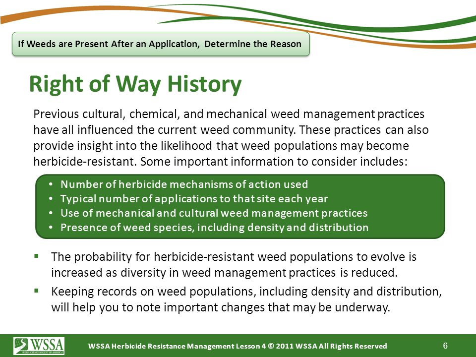 WSSA Herbicide Resistance Management Lesson 4 © 2011 WSSA All Rights Reserved 4. Application problems If Weeds are Present after an Application, Deter