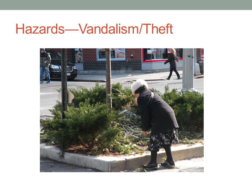 HazardsVandalism/Theft