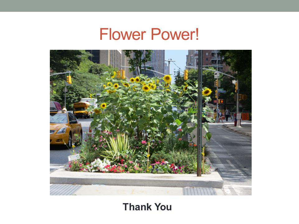 Flower Power! Thank You
