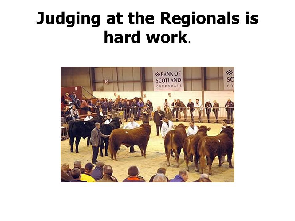 Judging at the Regionals is hard work.