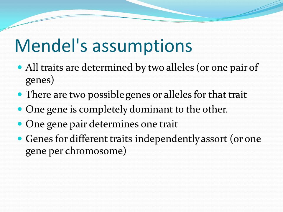 Mendel s assumptions All traits are determined by two alleles (or one pair of genes) There are two possible genes or alleles for that trait One gene is completely dominant to the other.
