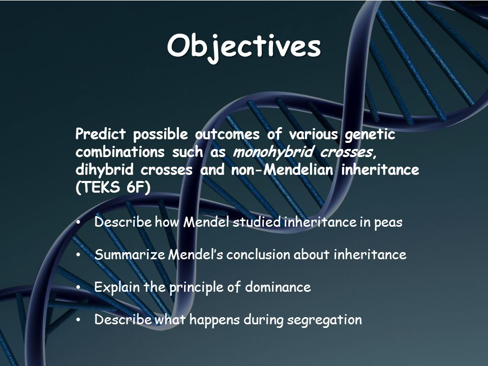 Objectives Predict possible outcomes of various genetic combinations such as monohybrid crosses, dihybrid crosses and non-Mendelian inheritance (TEKS