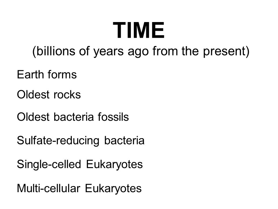 TIME (billions of years ago from the present) Earth forms Oldest rocks Oldest bacteria fossils Sulfate-reducing bacteria Single-celled Eukaryotes Mult