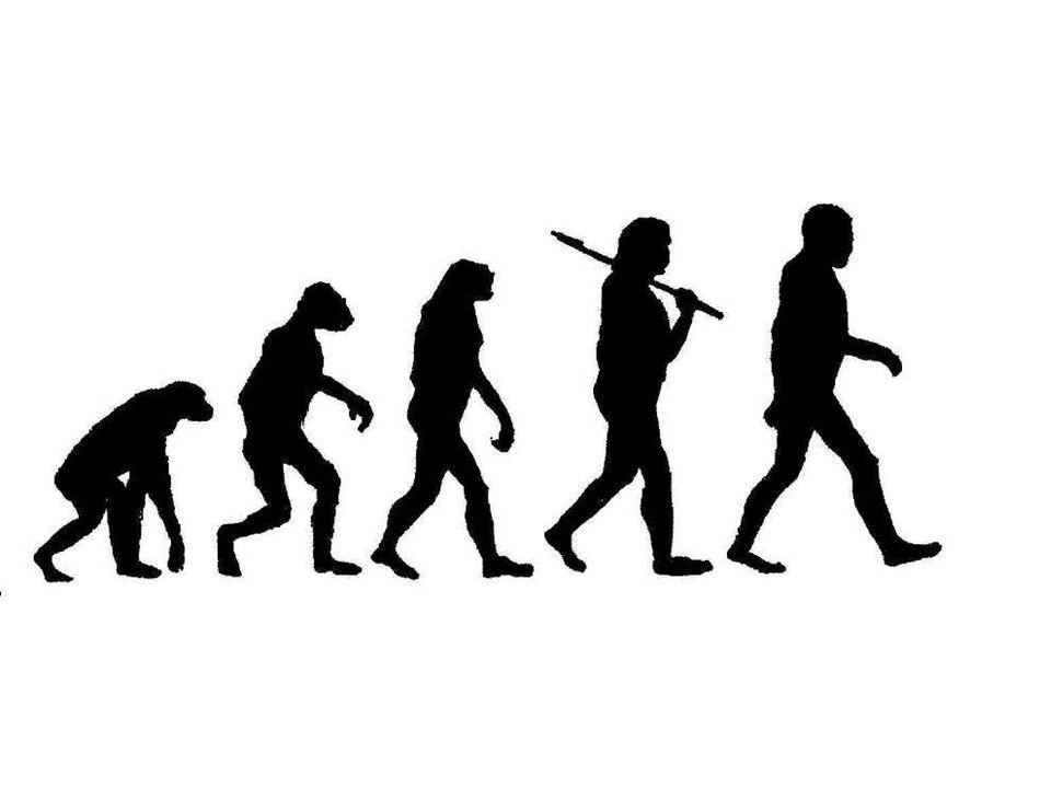 Evidence for Evolution