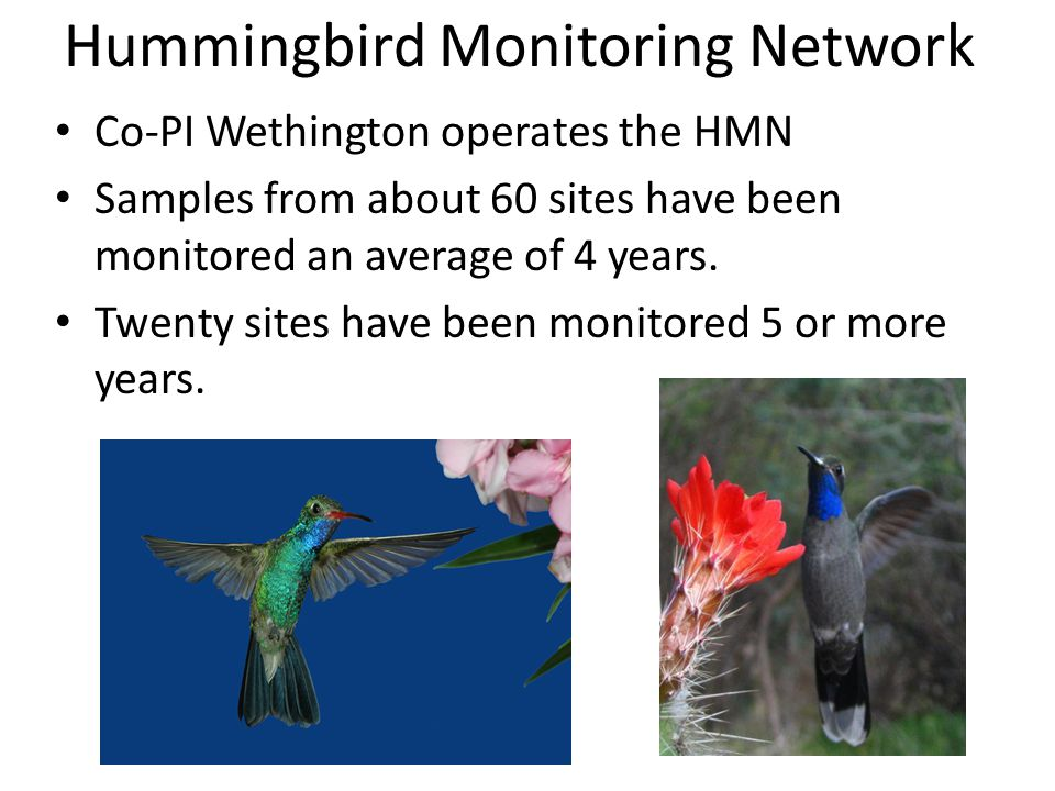 Co-PI Wethington operates the HMN Samples from about 60 sites have been monitored an average of 4 years.
