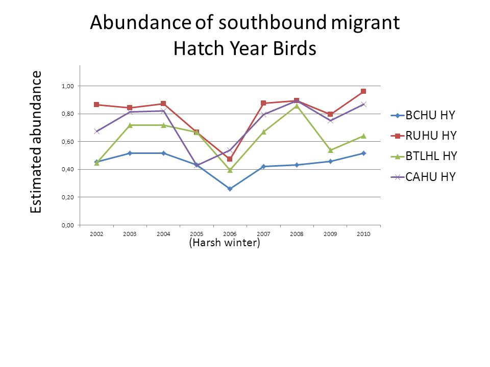 Estimated abundance Abundance of southbound migrant Hatch Year Birds (Harsh winter)