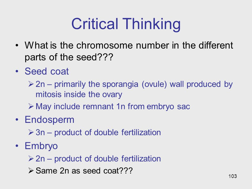 103 Critical Thinking What is the chromosome number in the different parts of the seed??.
