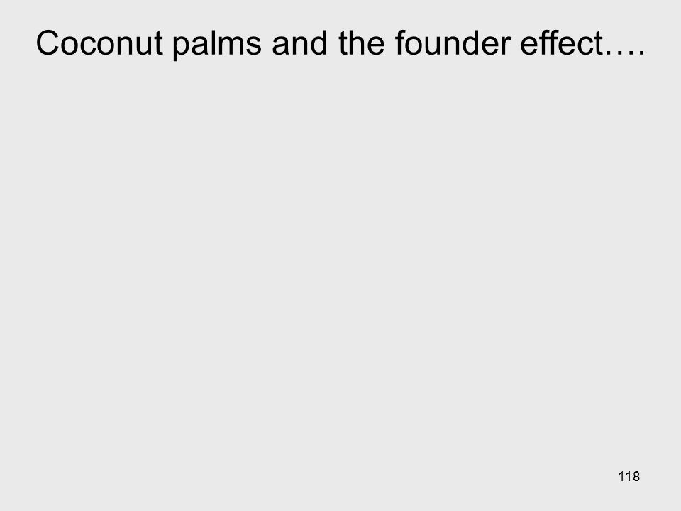 118 Coconut palms and the founder effect….