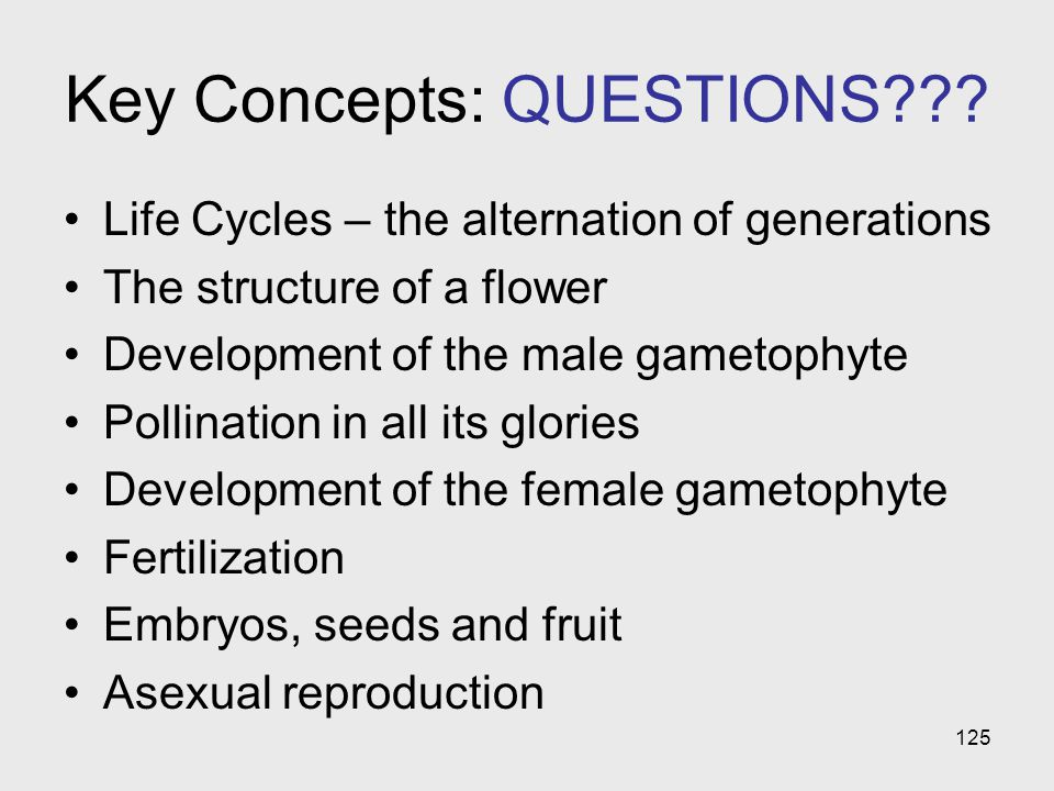 125 Key Concepts: QUESTIONS??? Life Cycles – the alternation of generations The structure of a flower Development of the male gametophyte Pollination