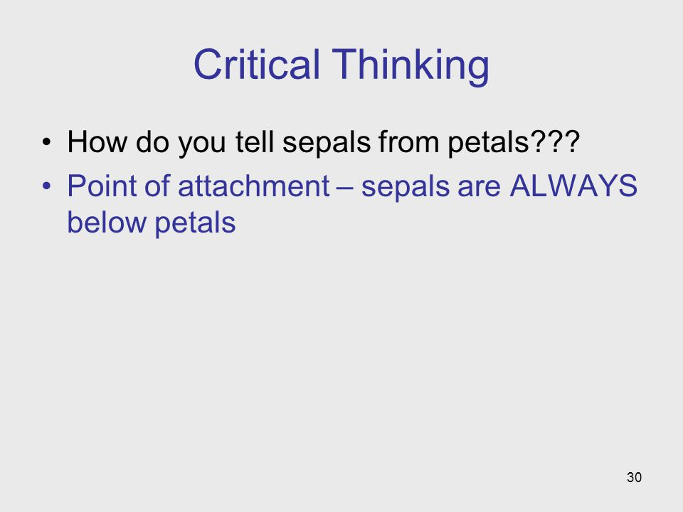 30 Critical Thinking How do you tell sepals from petals??.