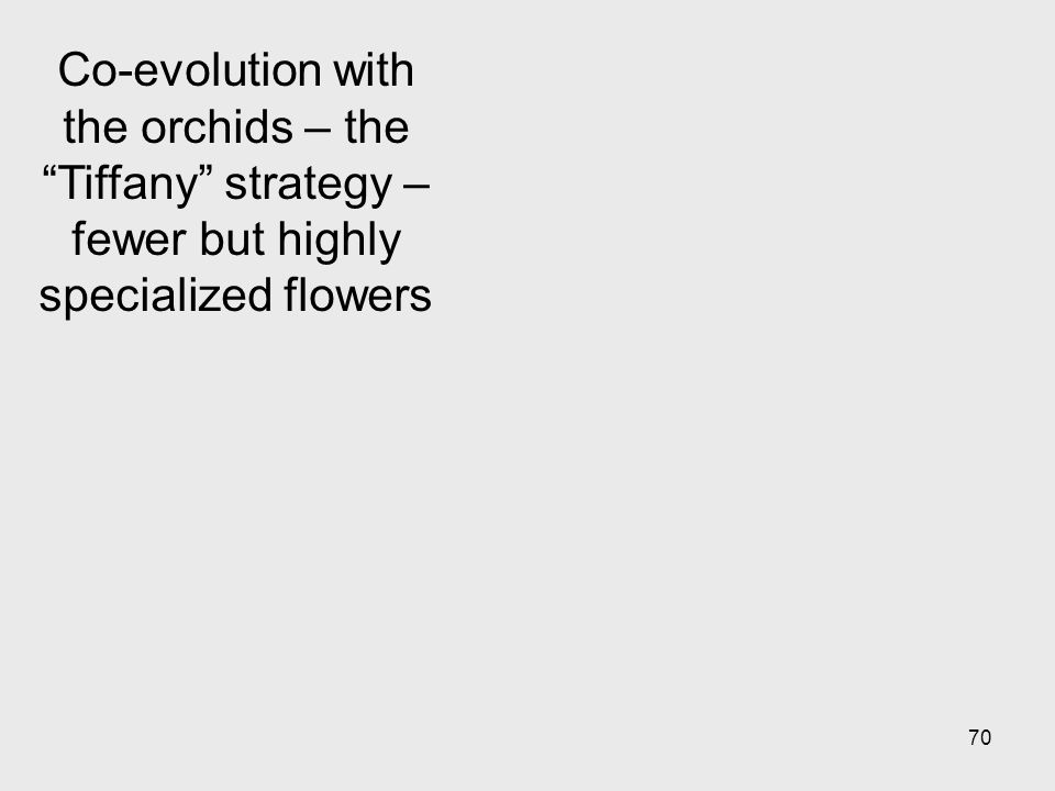 70 Co-evolution with the orchids – the Tiffany strategy – fewer but highly specialized flowers