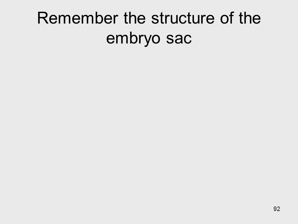 92 Remember the structure of the embryo sac