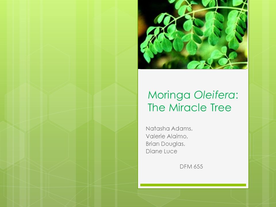 In Conclusion: Moringa Oleifera has enormous potential as a nutriceutical and functional food It could help to alleviate the problems caused by food insecurity and non- potable water More research is necessary