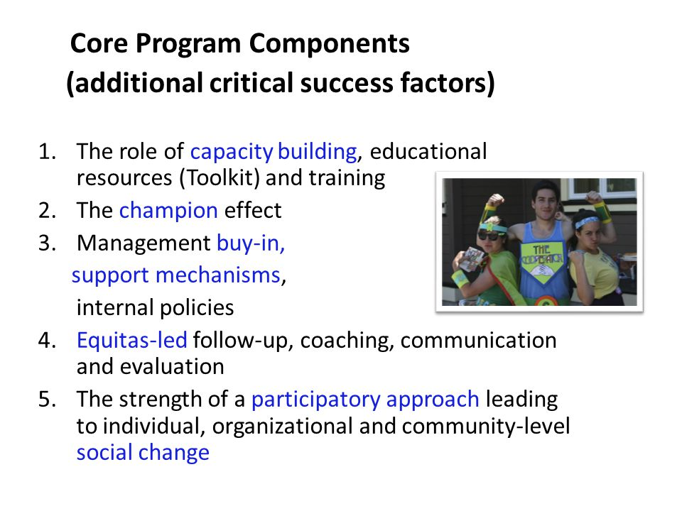 Core Program Components (additional critical success factors) 1.The role of capacity building, educational resources (Toolkit) and training 2.The champion effect 3.Management buy-in, support mechanisms, internal policies 4.Equitas-led follow-up, coaching, communication and evaluation 5.The strength of a participatory approach leading to individual, organizational and community-level social change