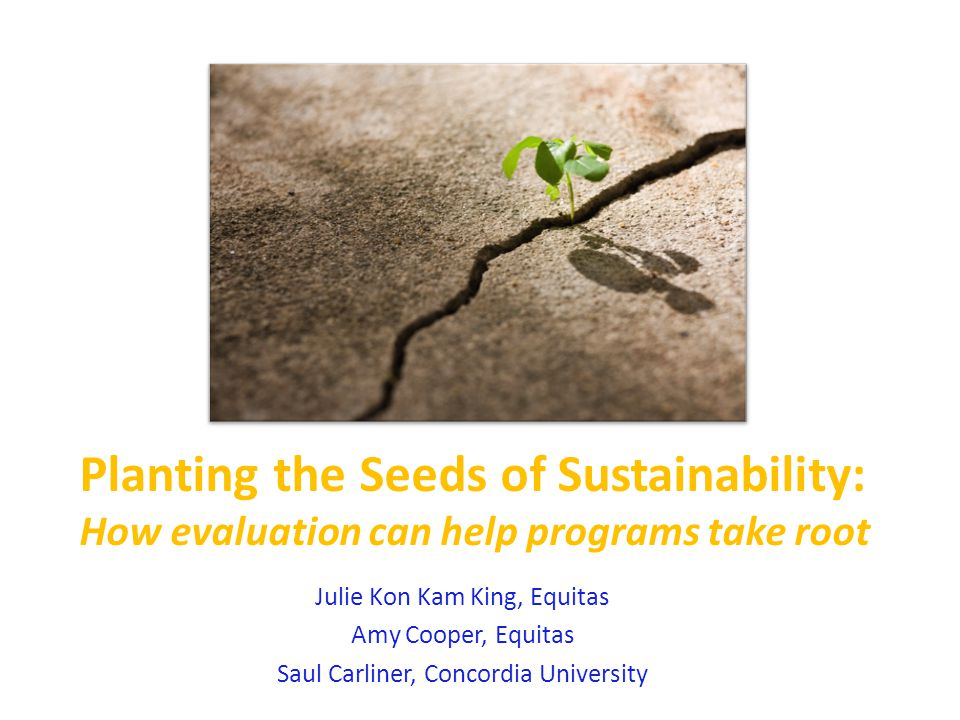 Planting the Seeds of Sustainability: How evaluation can help programs take root Julie Kon Kam King, Equitas Amy Cooper, Equitas Saul Carliner, Concordia University