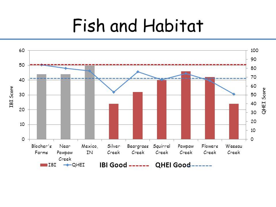 Fish and Habitat