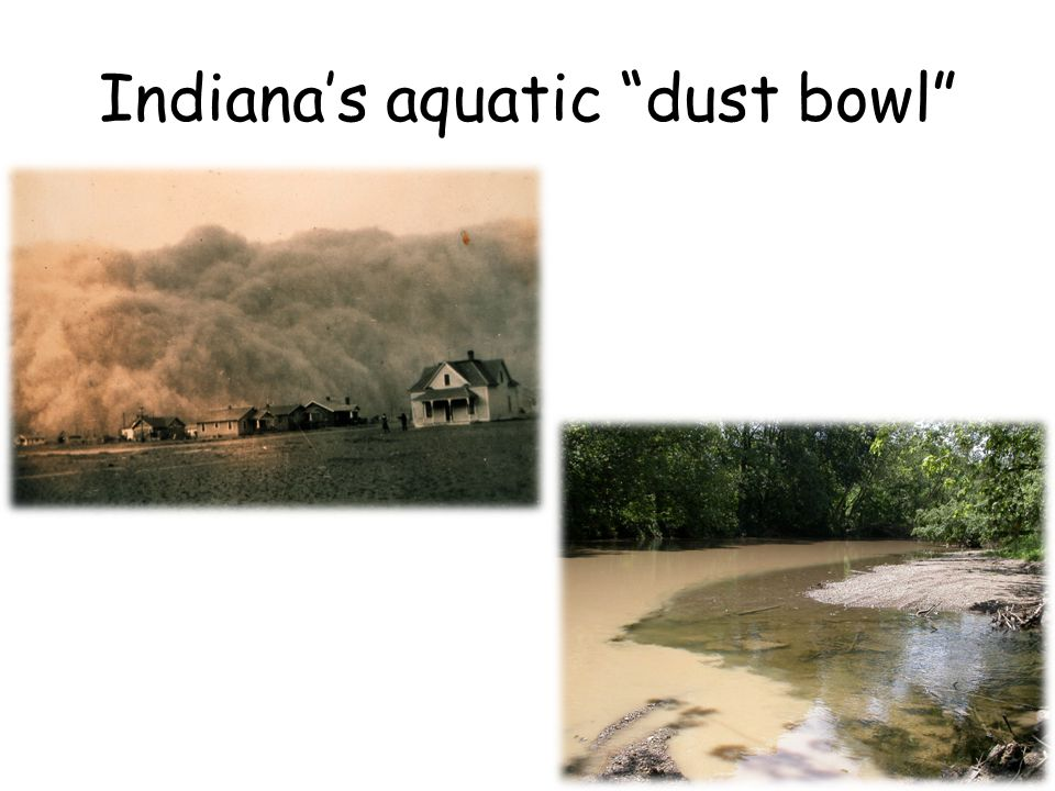 Indianas aquatic dust bowl