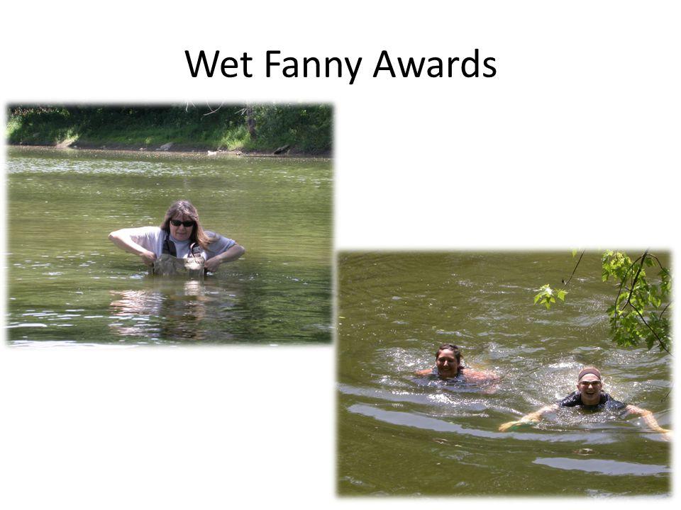 Wet Fanny Awards