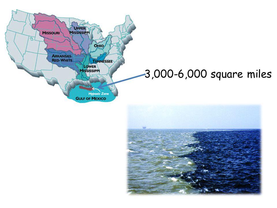 3,000-6,000 square miles