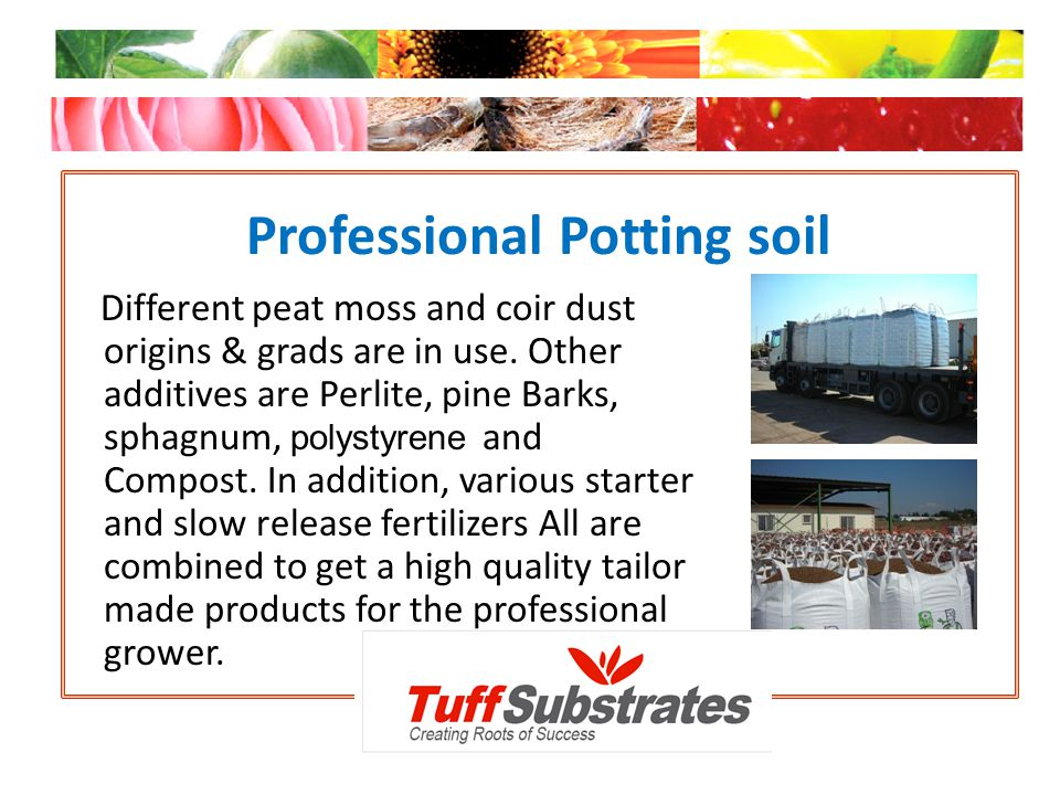 Professional Potting soil Different peat moss and coir dust origins & grads are in use. Other additives are Perlite, pine Barks, sphagnum, polystyrene