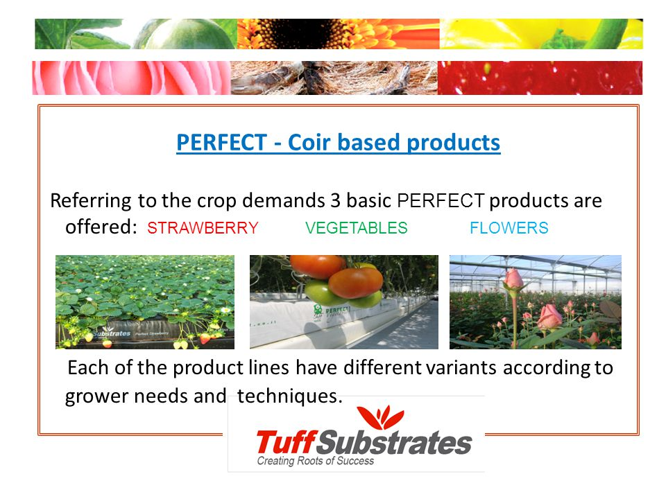 PERFECT - Coir based products Referring to the crop demands 3 basic PERFECT products are offered: STRAWBERRY VEGETABLES FLOWERS Each of the product li