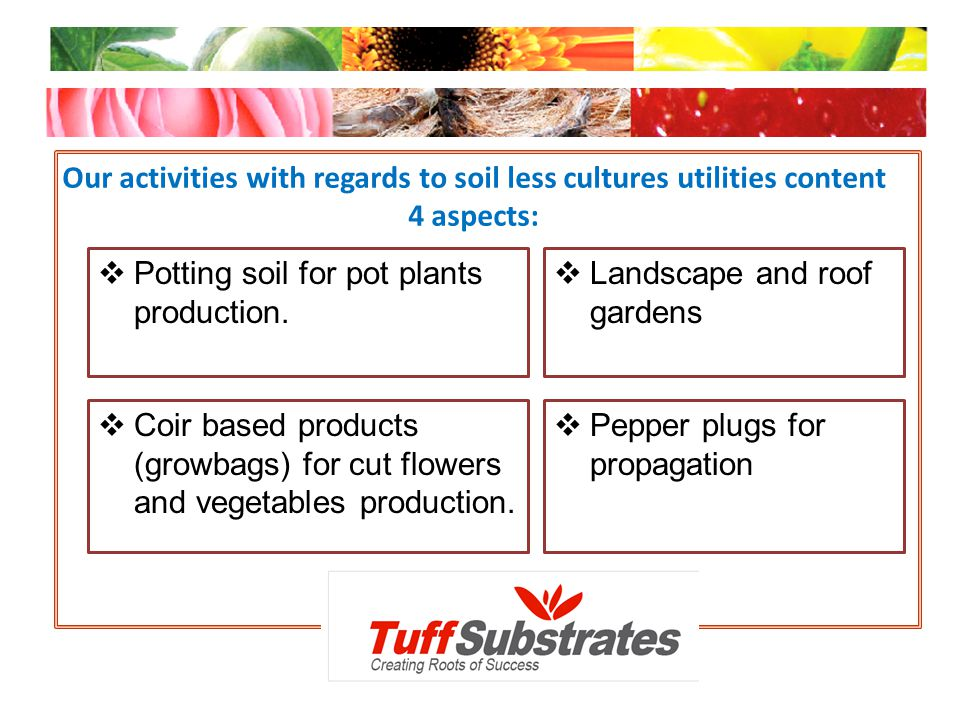 Our activities with regards to soil less cultures utilities content 4 aspects: Potting soil for pot plants production. Landscape and roof gardens Coir