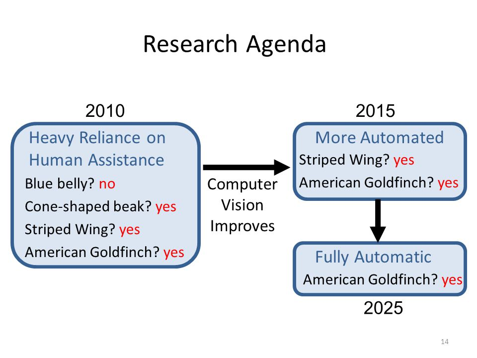 Research Agenda Heavy Reliance on Human Assistance More Automated Computer Vision Improves Blue belly.
