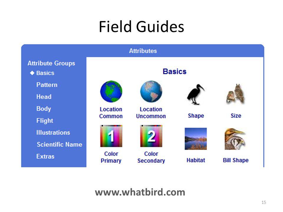 Field Guides www.whatbird.com 15