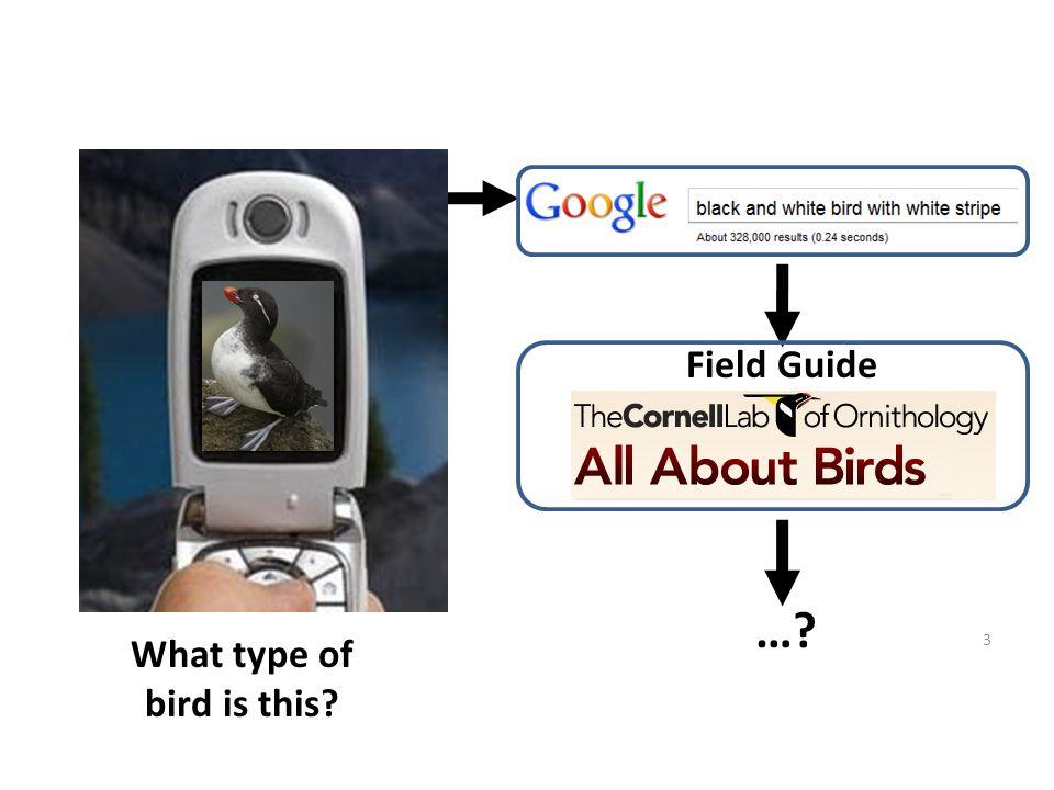 3 … Field Guide