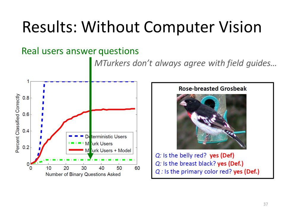 Results: Without Computer Vision Real users answer questions MTurkers dont always agree with field guides… 37