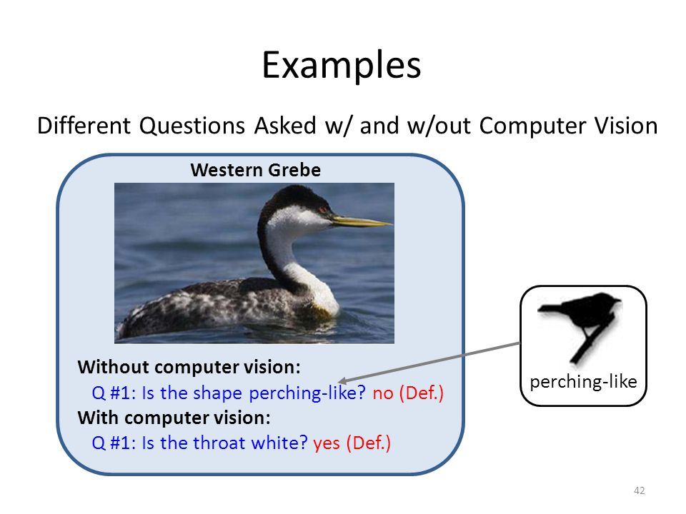 Examples Without computer vision: Q #1: Is the shape perching-like.