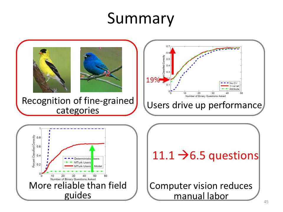 Summary 11.1 6.5 questions Computer vision reduces manual labor Users drive up performance 19% 45 Recognition of fine-grained categories More reliable than field guides