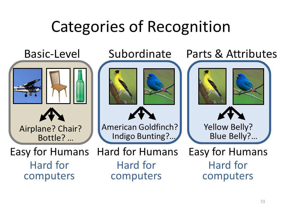 Categories of Recognition Easy for Humans Airplane? Chair? Bottle? … Hard for Humans American Goldfinch? Indigo Bunting?… Easy for Humans Yellow Belly