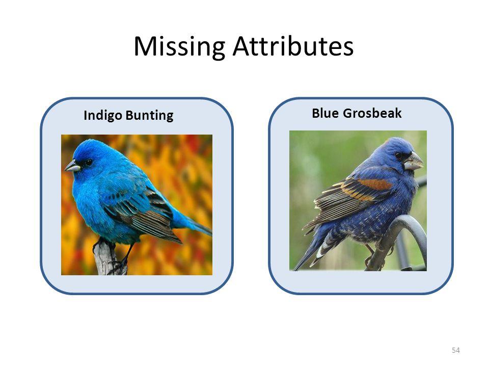 Missing Attributes Indigo Bunting Blue Grosbeak 54