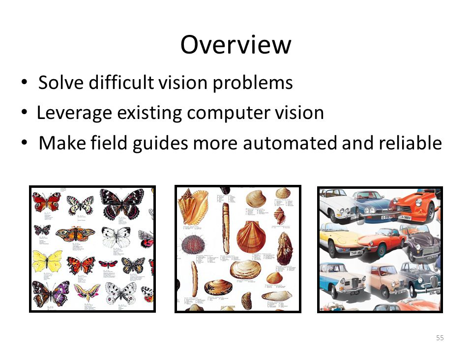 Overview Solve difficult vision problems Leverage existing computer vision Make field guides more automated and reliable 55