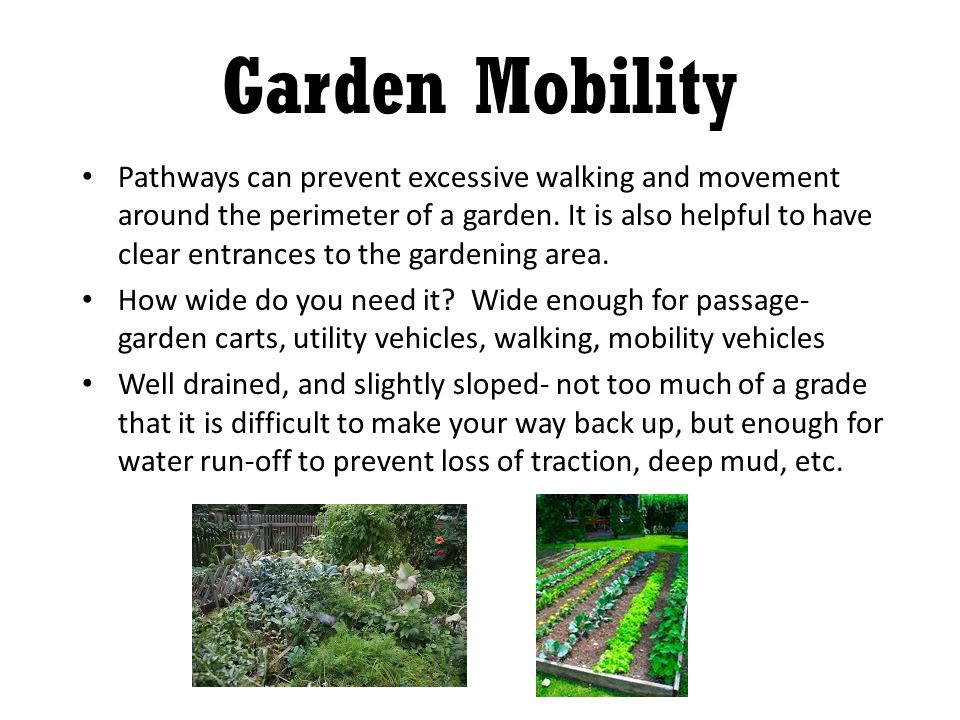 Pathways can prevent excessive walking and movement around the perimeter of a garden.